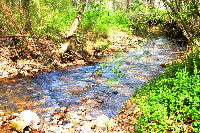 sb creek spring 16
