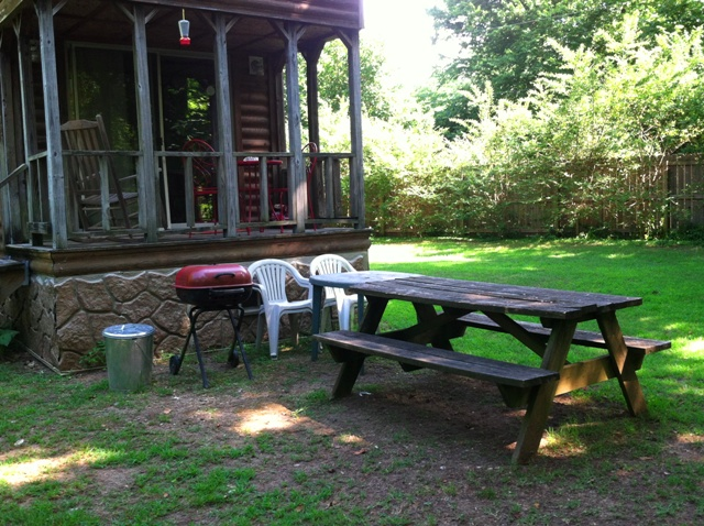 sb deck and side yard and picnic table