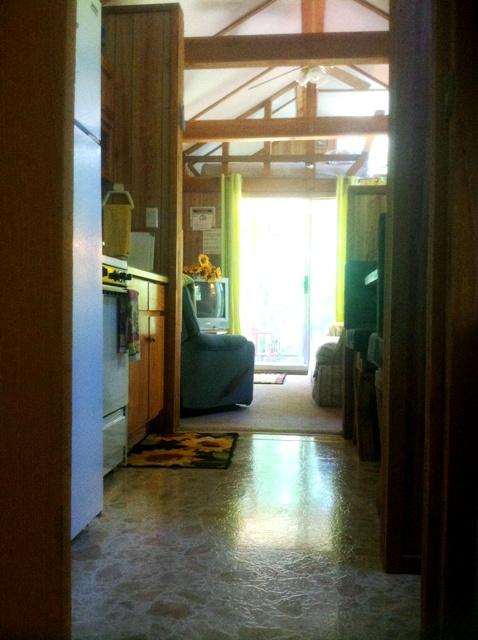 sb-shiny-floor-478x640